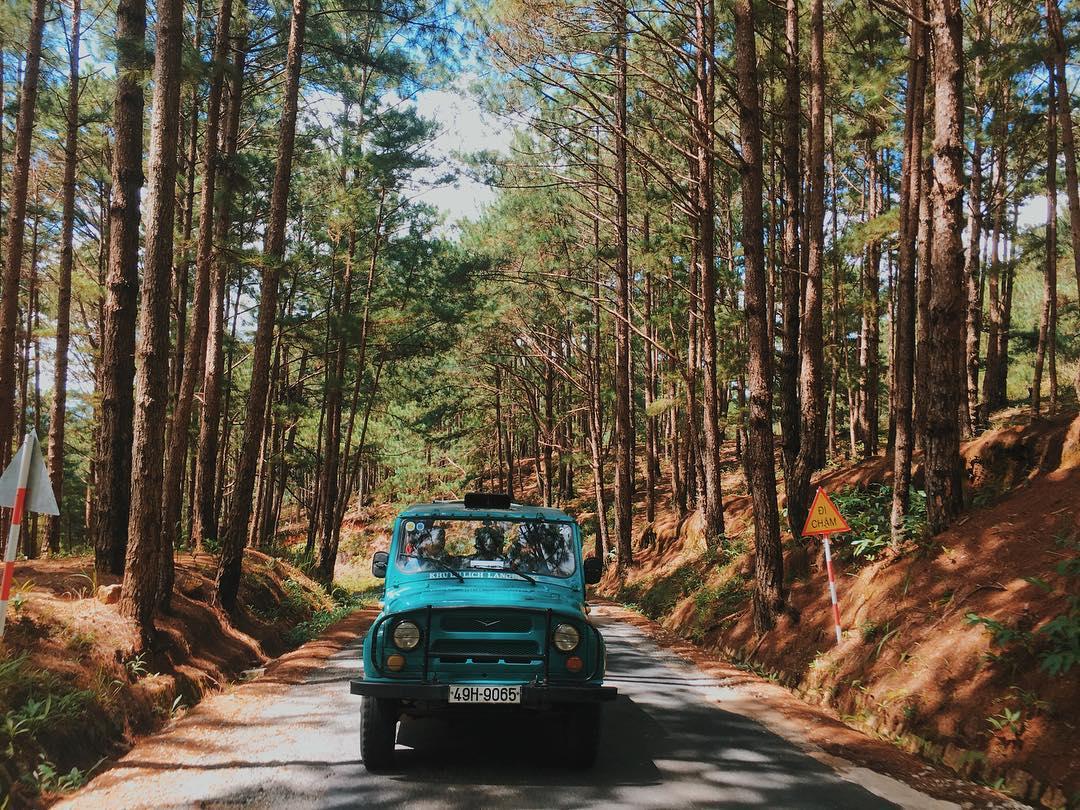 Kinh nghiệm du lịch Đà Lạt tự túc, giá rẻ từ A – Z