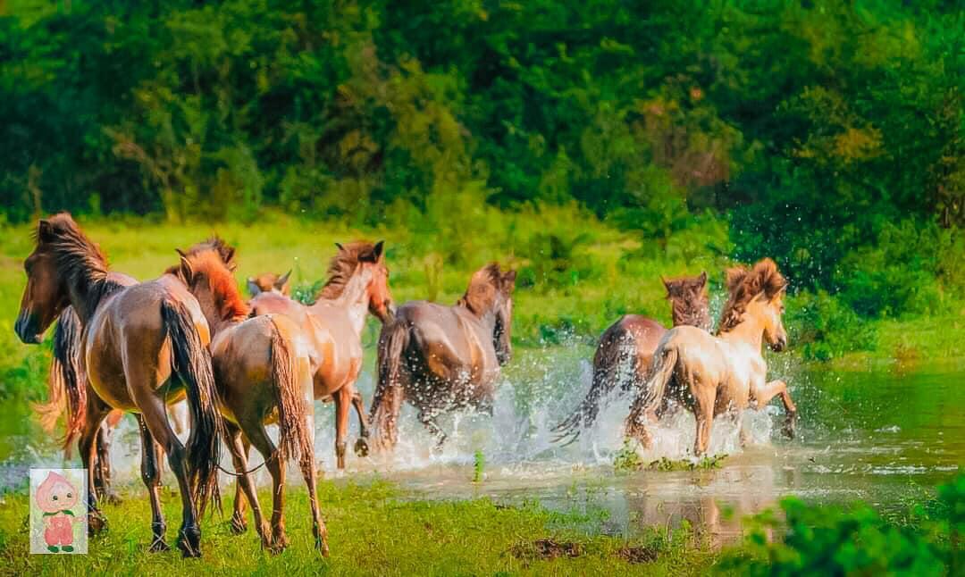 Theo chân Hiền Vi cùng khám phá cảnh đẹp Hữu Liên, Lạng Sơn.