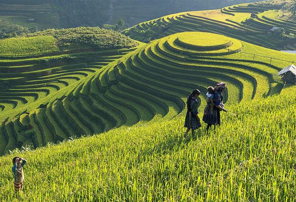 Cuộc đua kỳ thú (Amazing Race) Bản Hồ - Thanh Phú